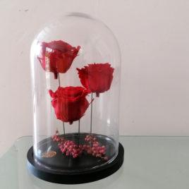 Globe de roses éternelles rouges