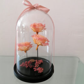 Globe de roses éternelles crèmes
